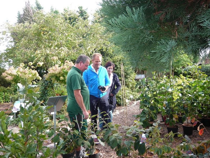 Rhododendronzüchter Holger Hachmann besucht unsere Baumschule