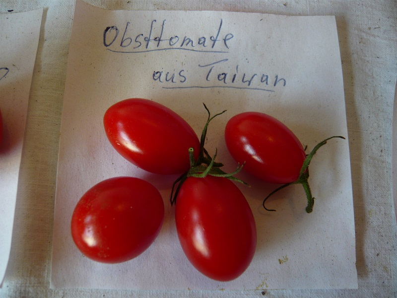 Obsttomate aus Taiwan