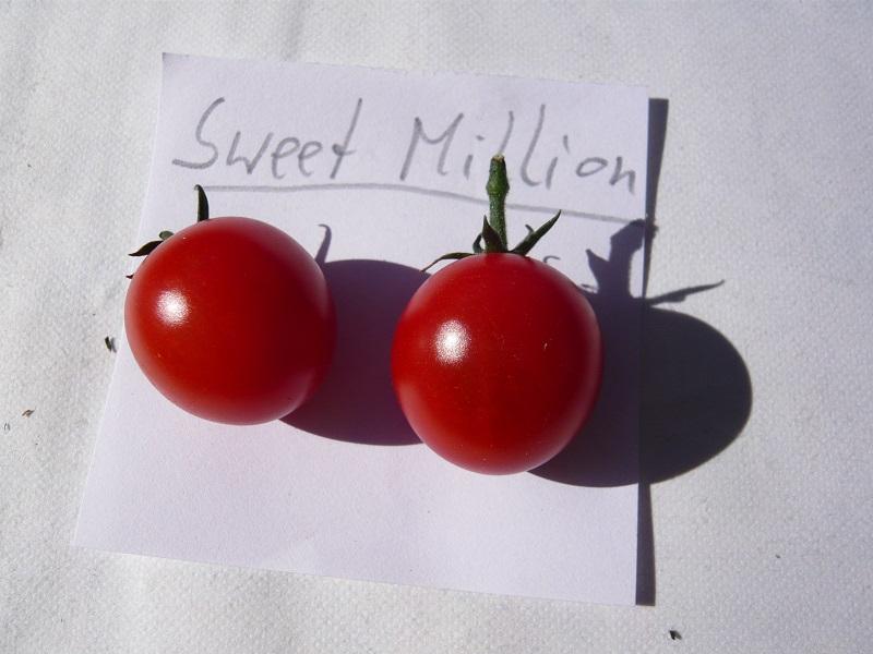Sweet Million
