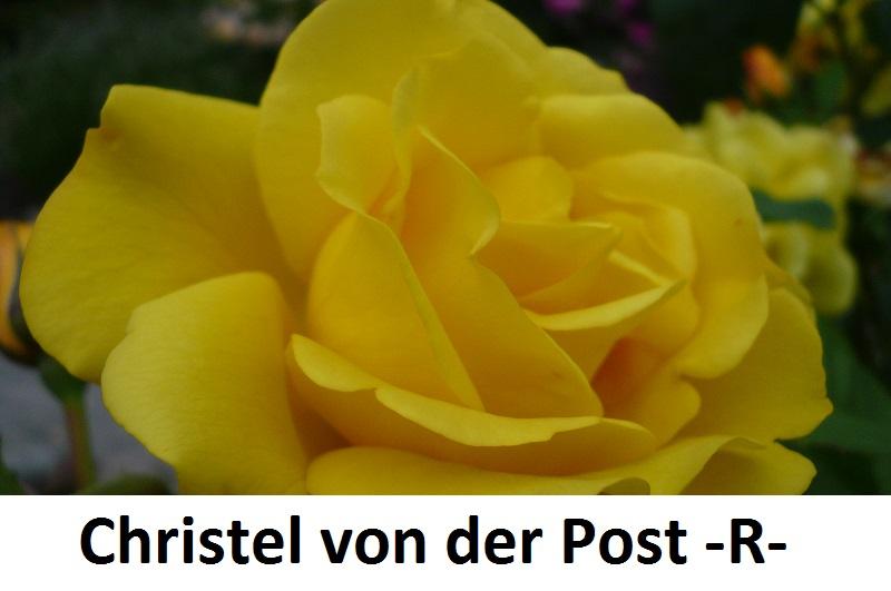 Christel von der Post