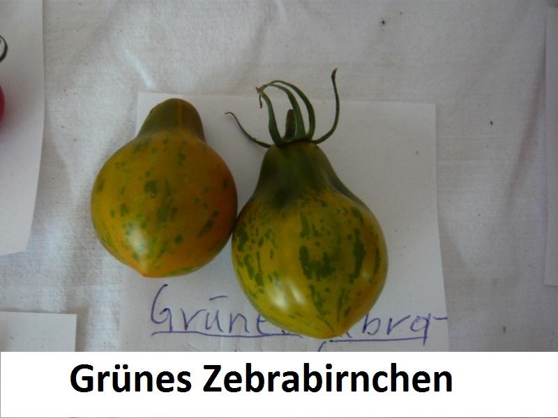 Grünes Zebrabirnchen