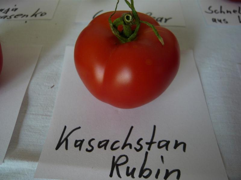 Kasachstan Rubin