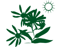 Blütenstauden – sonniger Standort