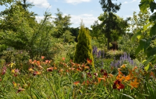 startseite baumschule hager. Black Bedroom Furniture Sets. Home Design Ideas