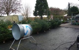 Weihnachtsbäume 2017