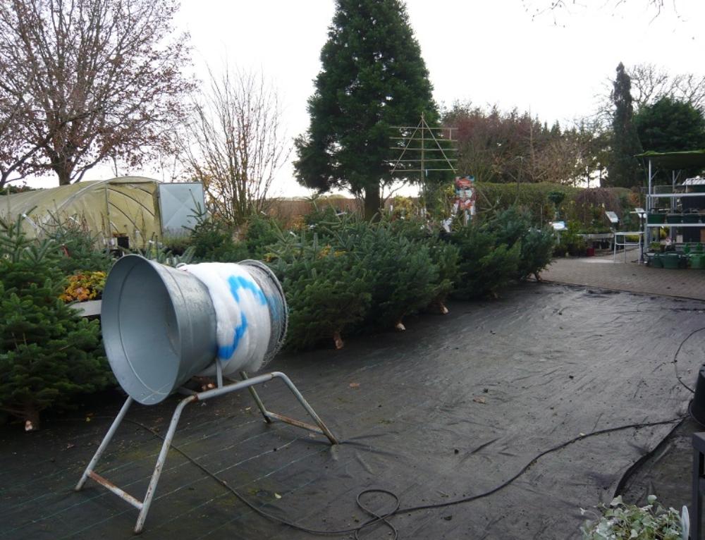 Weihnachtsbaumverkauf bis zum 23. Dezember