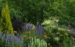Botanischer Garten7