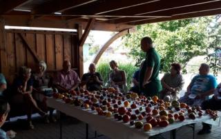 Tomatenverkostungsrunde