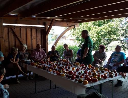 Tomatenverkostung am 17.08.2019