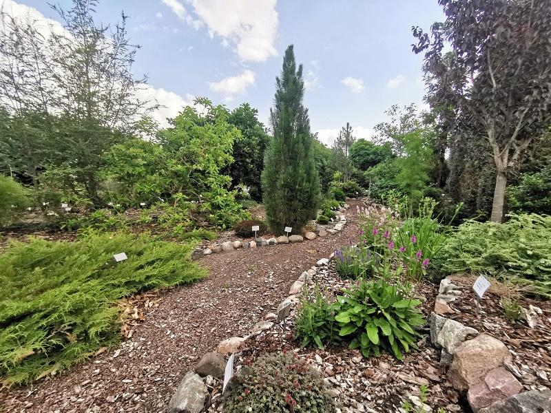Botanischer Garten Baumschule Hager Juli 2020