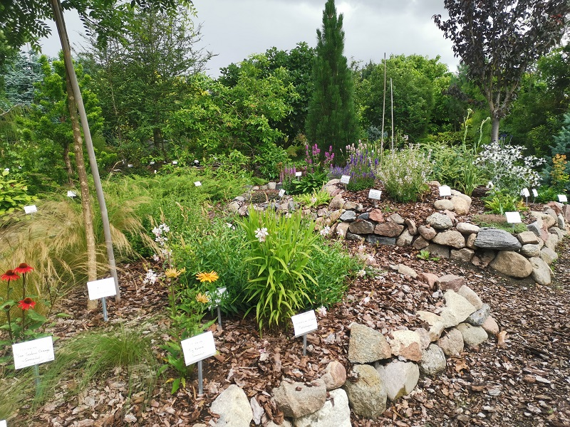 Botanischer Garten 2020