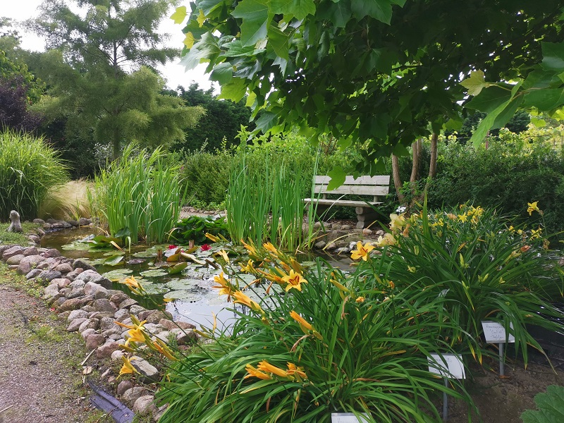 Botanischer Garten Bauschule Hager 2020